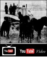 Wassende Rivier Pony's 1983